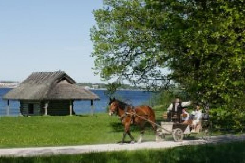 Talvine lastelaager Eesti Vabaõhumuuseumis