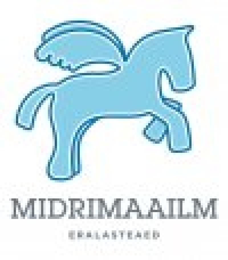 Suvised seiklused Midrimajas