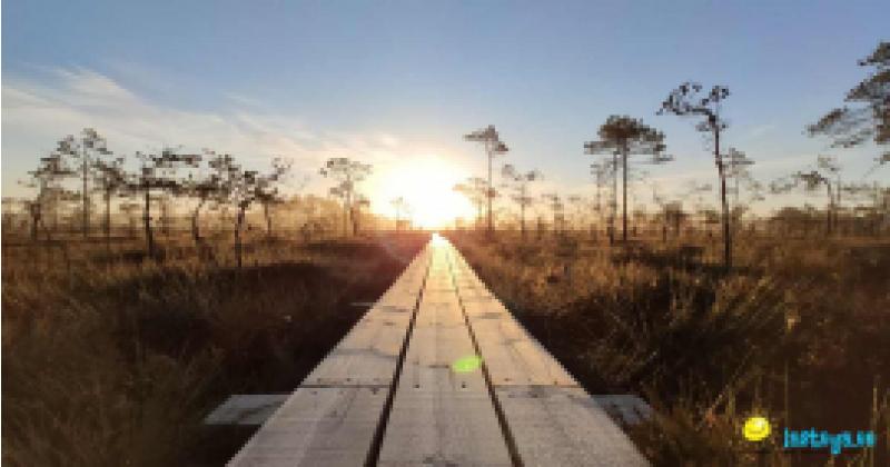 Et oleks su päevad päikest kõik täis,