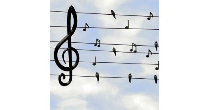 Muusika on rõõmu jaoks