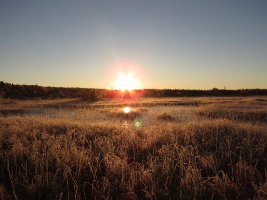 Kadripäeva päikesetõus Valgjärve matkarajal
