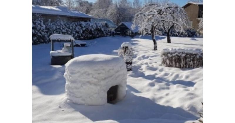 Talvine onn