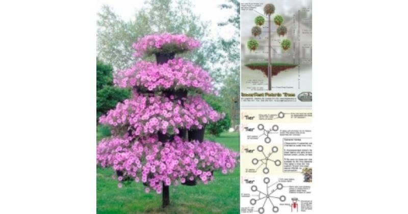 Amplitaimedest kujundatud puu ehk amplipuu