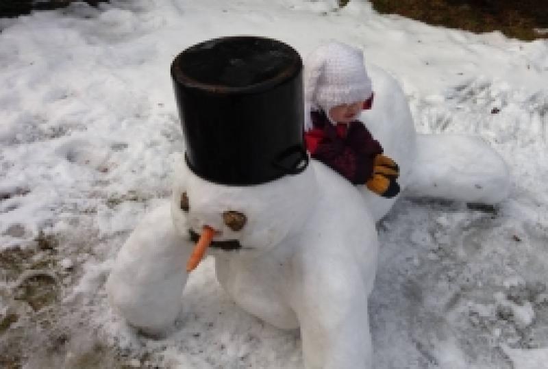 Roomav lumememm