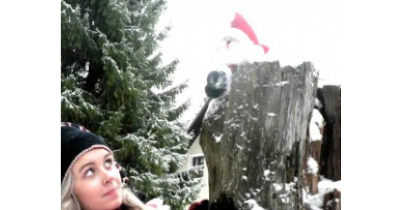 Jõuluöö - Merit Männiste