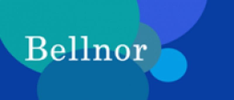 Bellnor International Summer Camp
