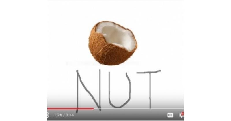 Kookospähkli laul / The Coconut Song