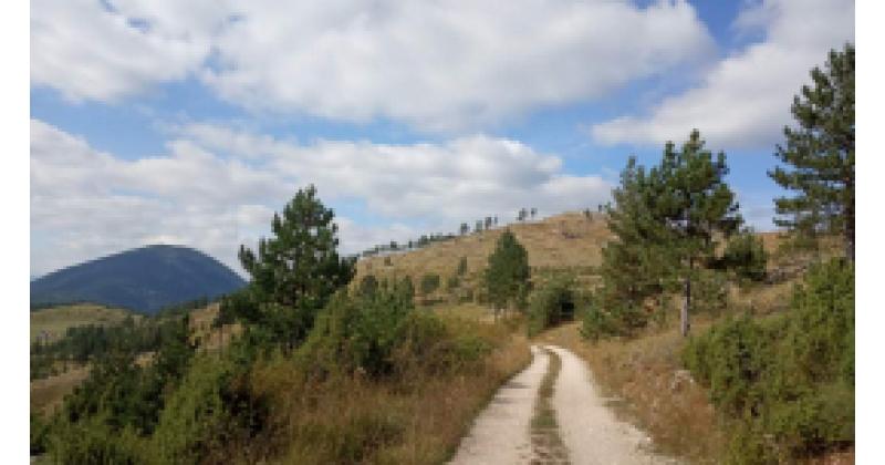 Ma kõnnin, kõnnin mägedes